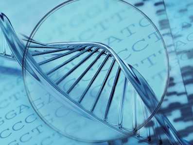 精准医疗春天临近 基因测序应用前景广阔