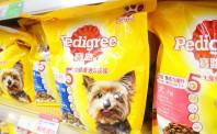 养宠受追捧,国内宠物食品电商为何始终萎靡不振