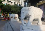 蚂蚁集团就亚洲象保护与云南、西双版纳签署框架协议
